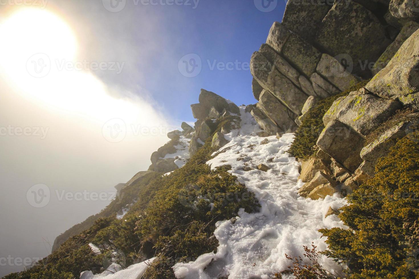 caminho de neve foto