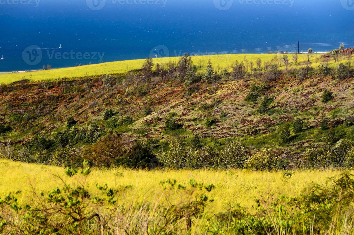 costa oeste de kauai foto