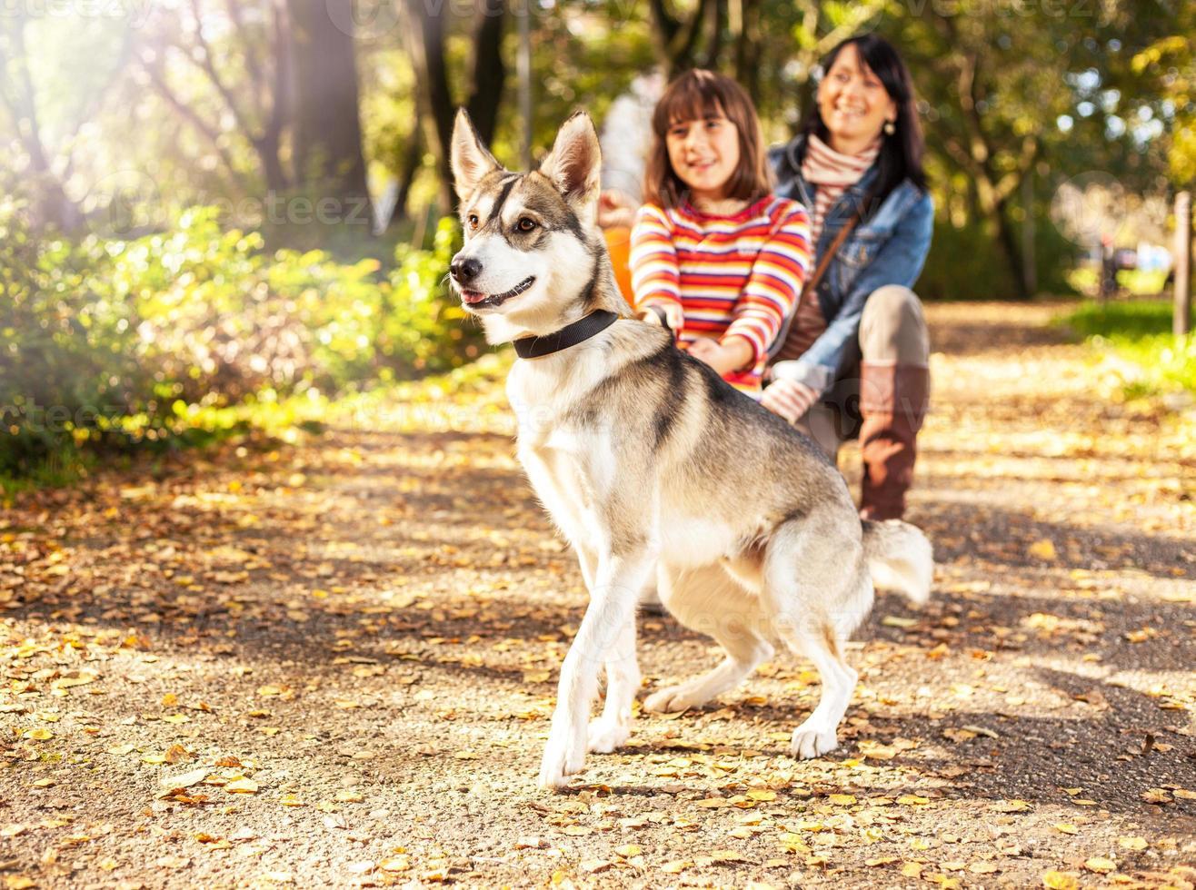 família feliz andando no parque foto
