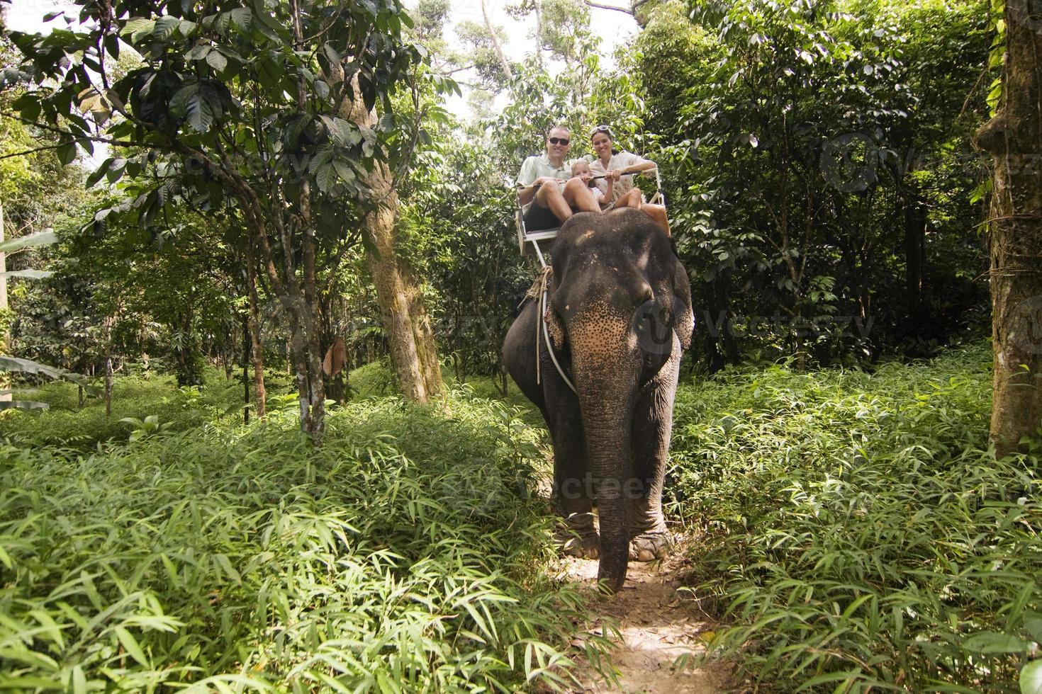 passeio de elefante da família foto