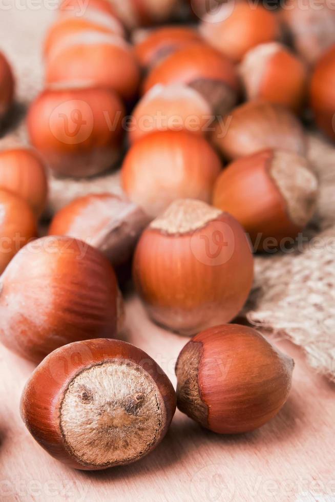 close-up de avelãs foto