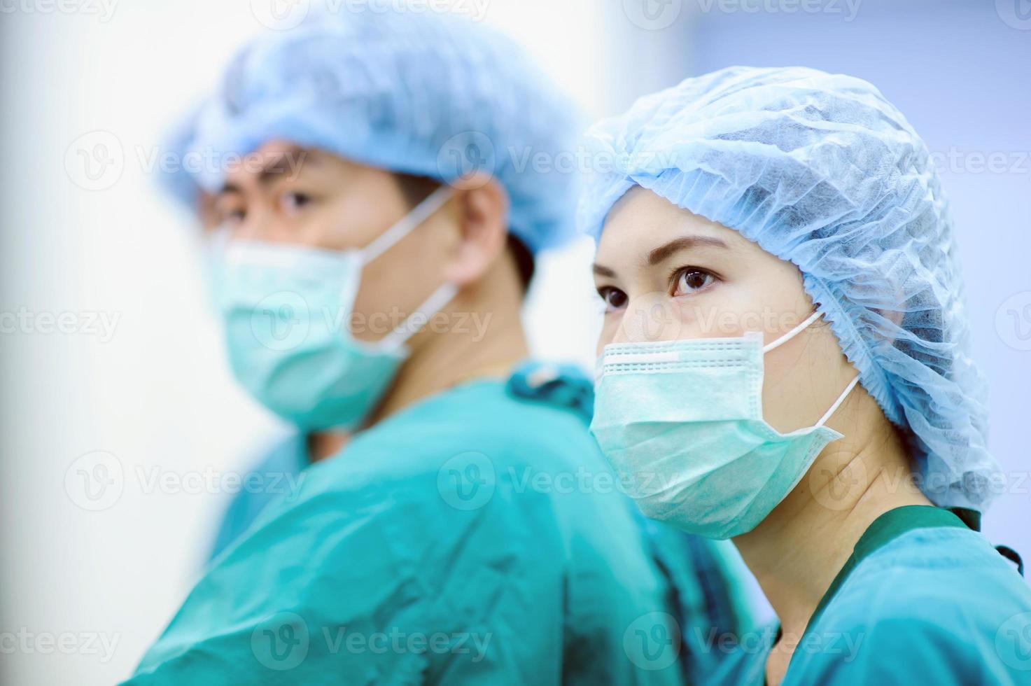 equipe de veterinários foto