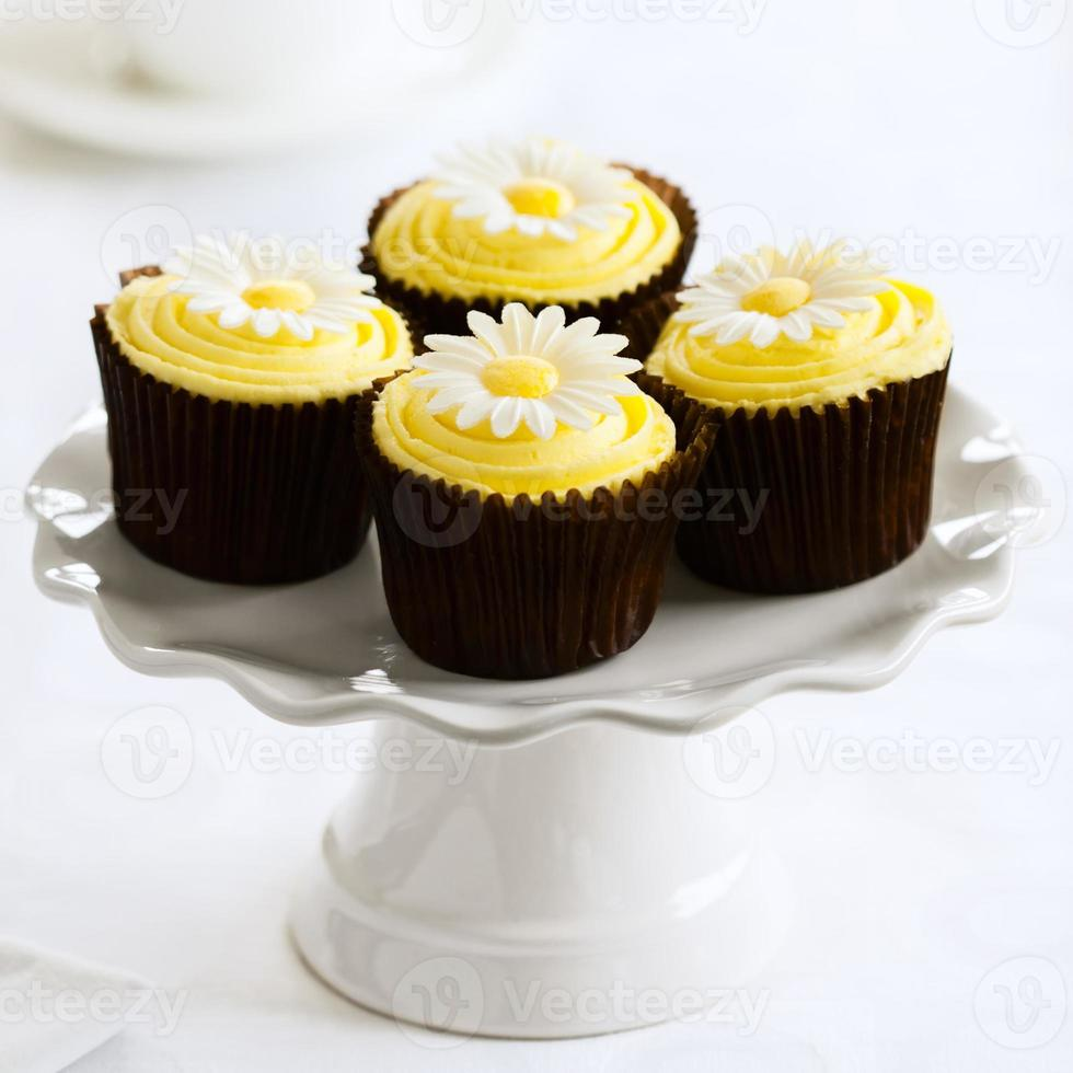 cupcakes margarida foto