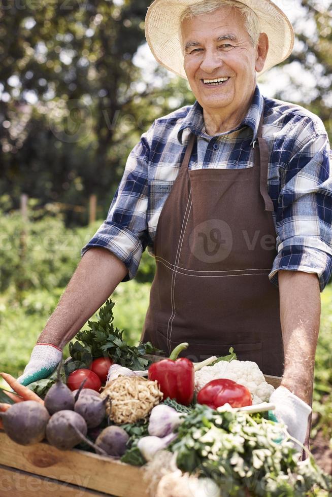 caixa de levantamento do homem sênior cheia de legumes sazonais foto