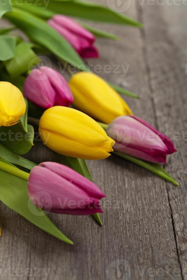 buquê de tulipas foto
