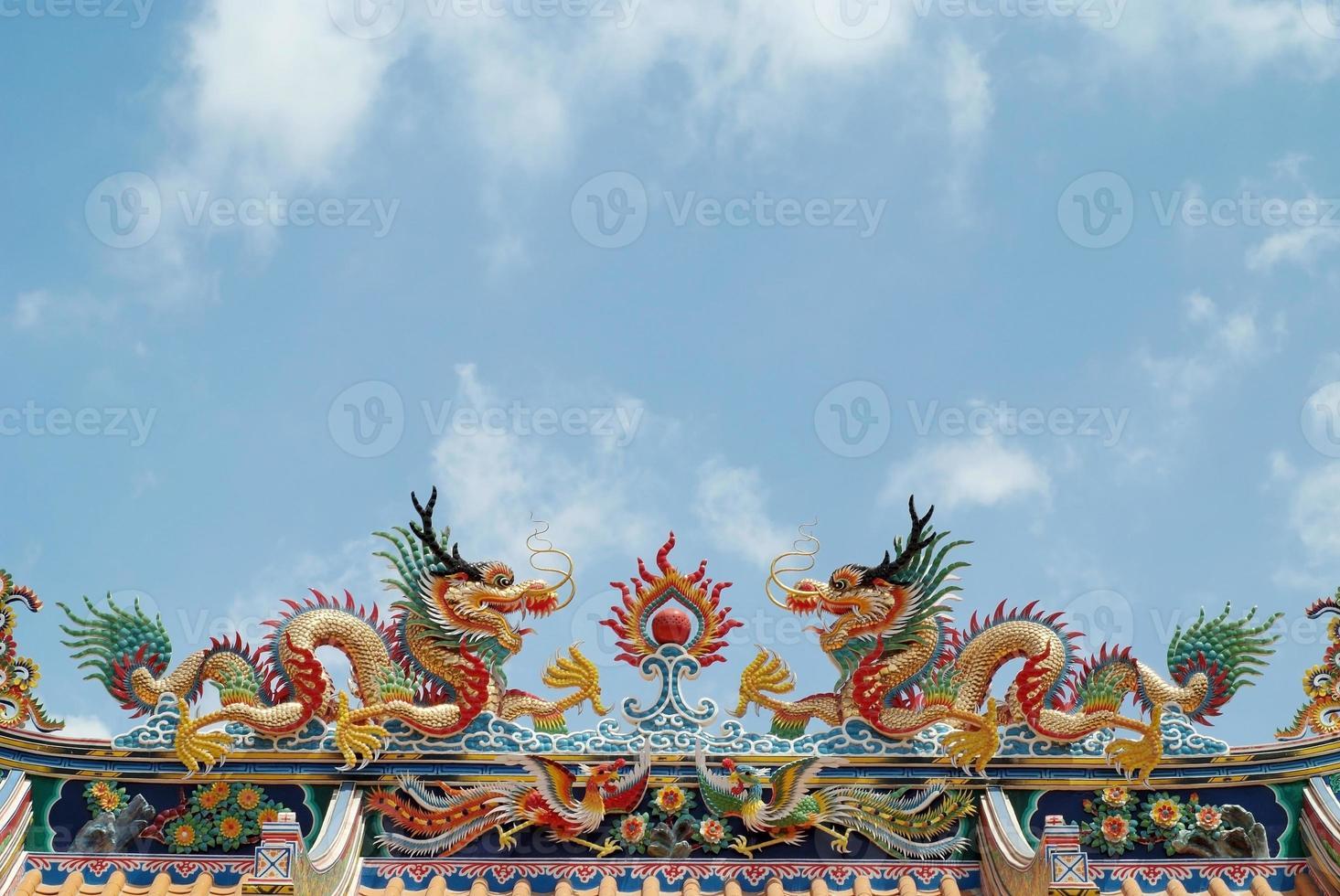 dragão colorido 3 foto