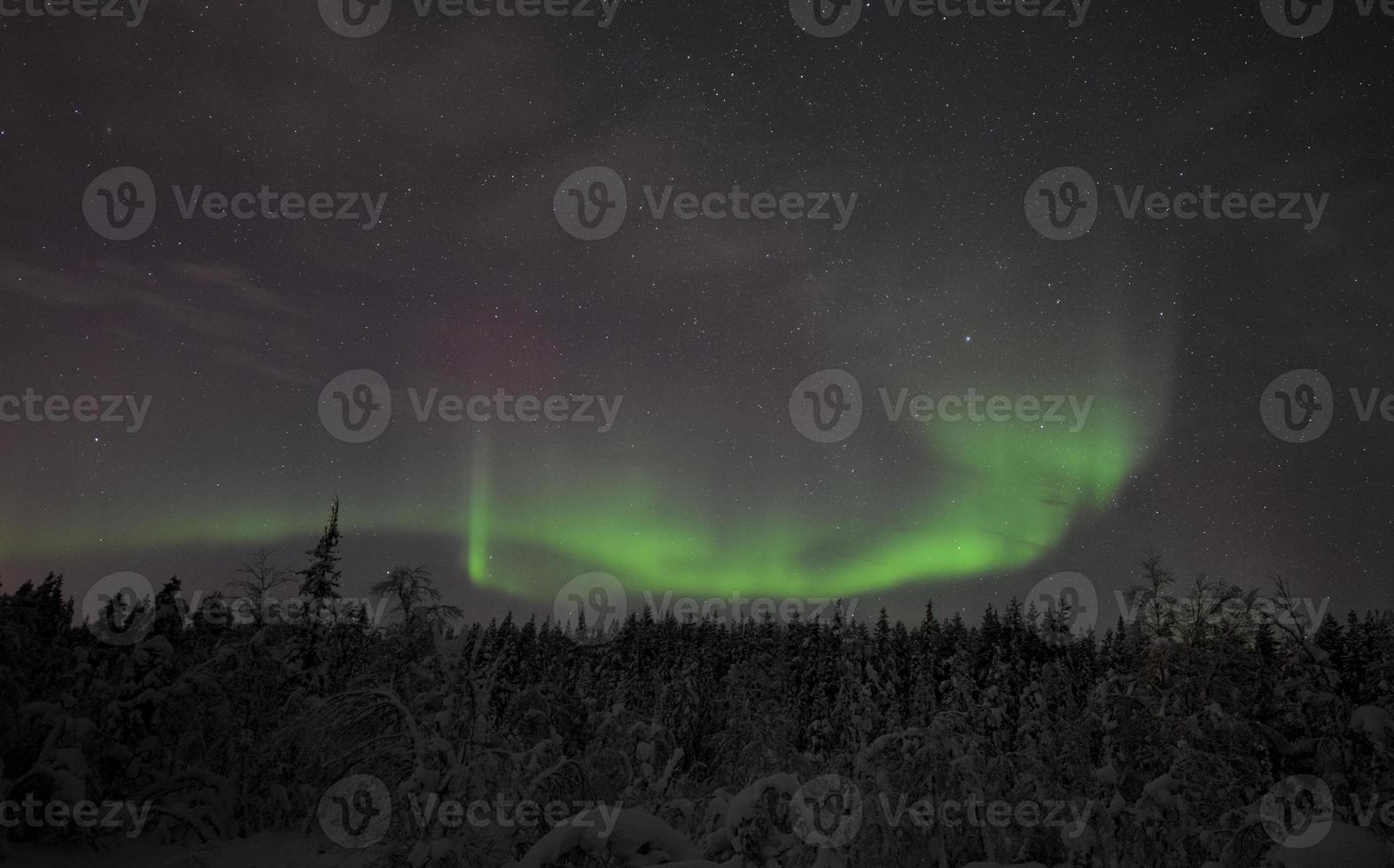 aurora boreal na Lapônia / Suécia foto