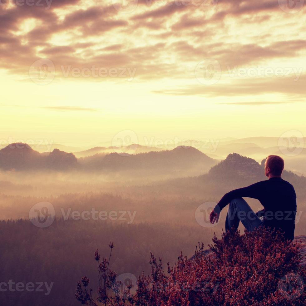 alpinista alto em shirtt na rocha em arbustos de urze, aproveite foto