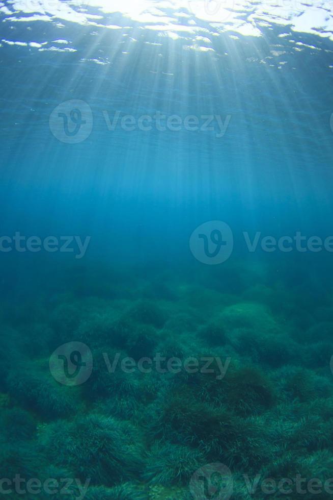 fundo azul subaquático foto
