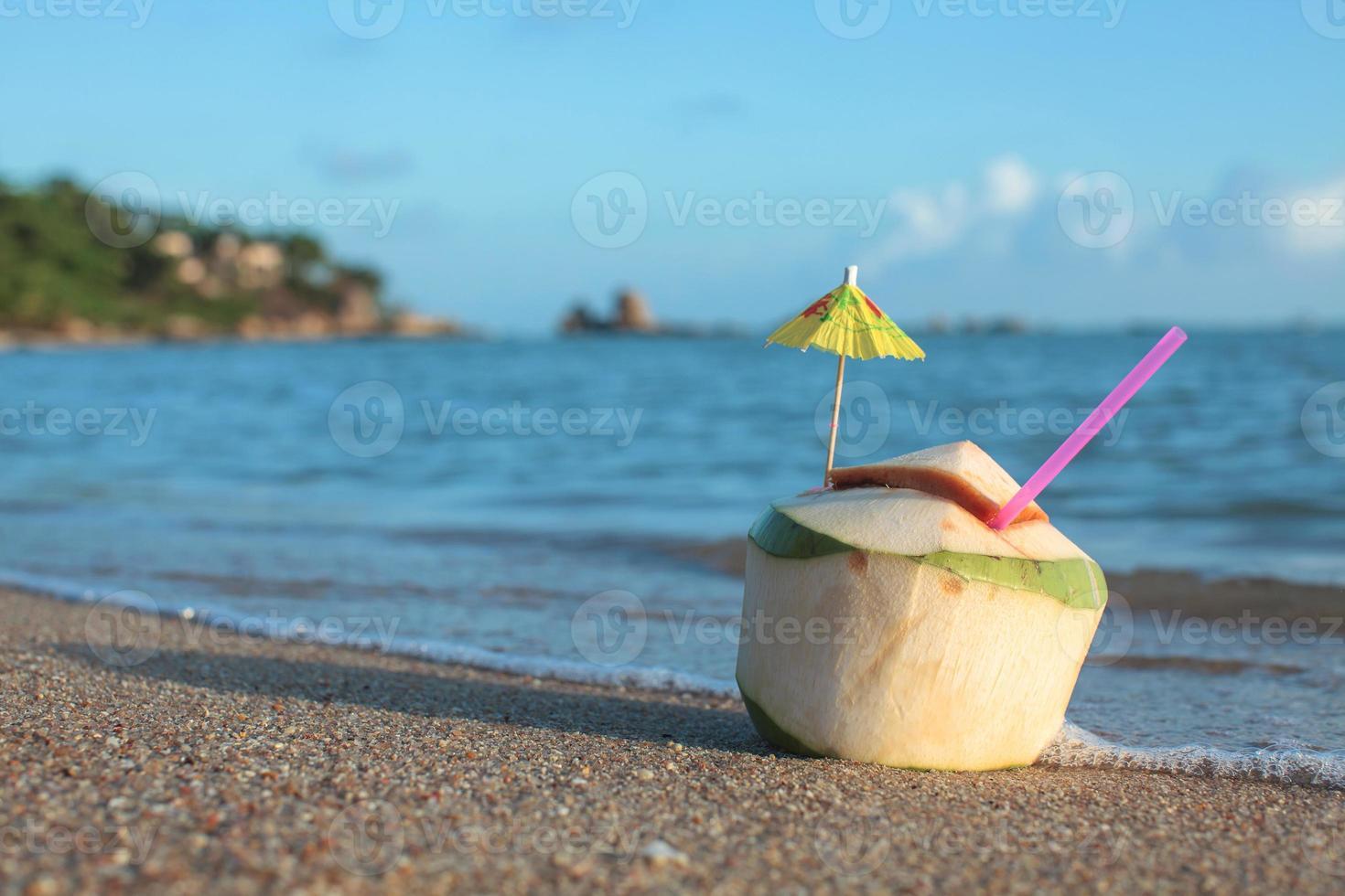 beber água de coco foto
