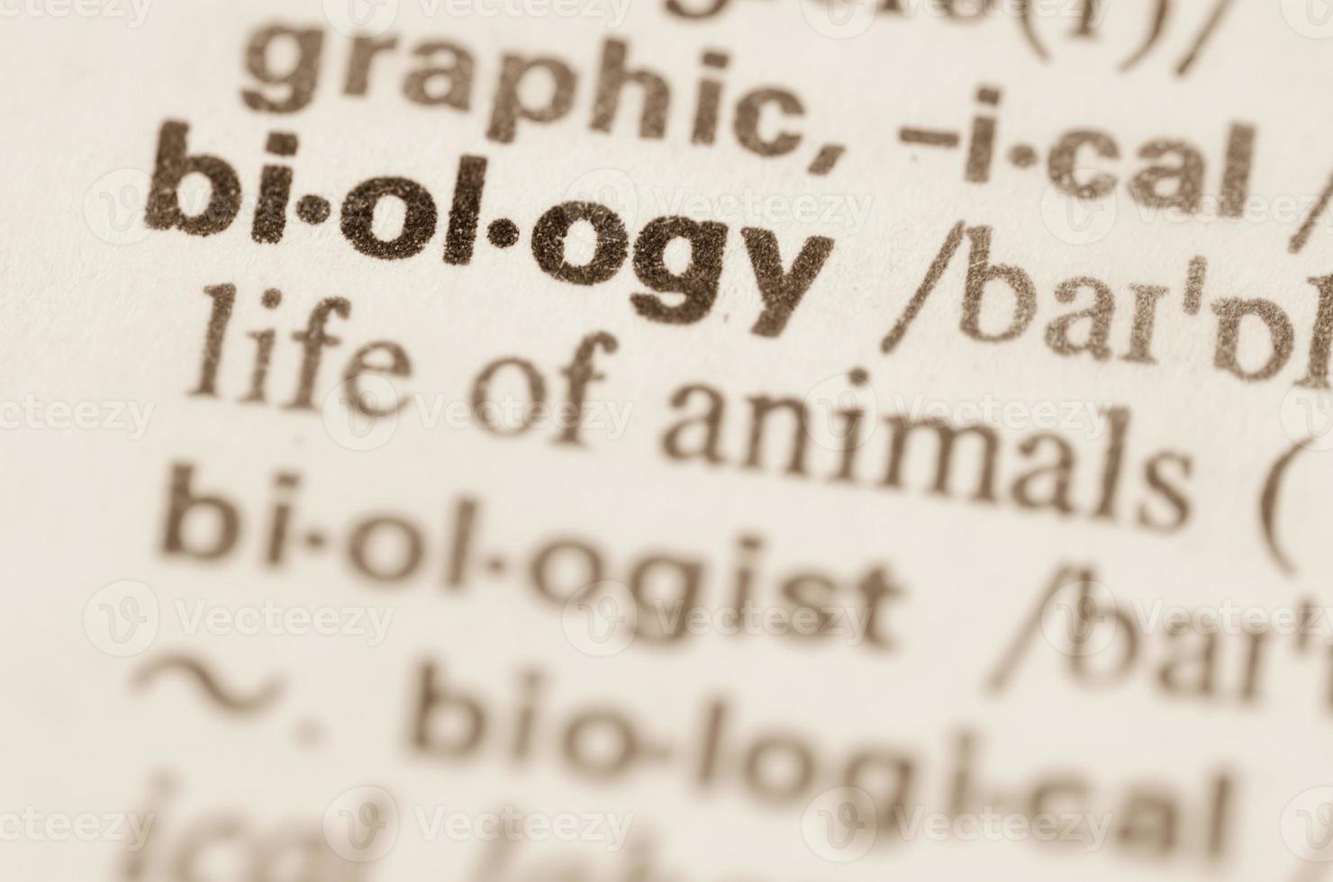definição de dicionário de biologia da palavra foto