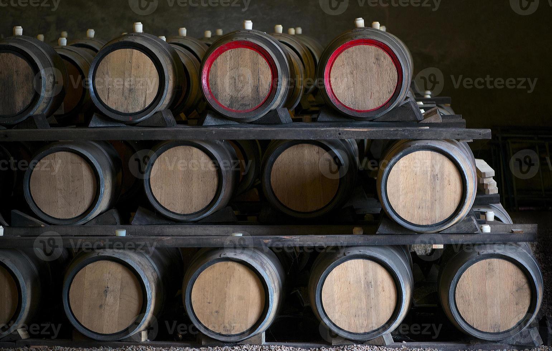 barris de vinho foto