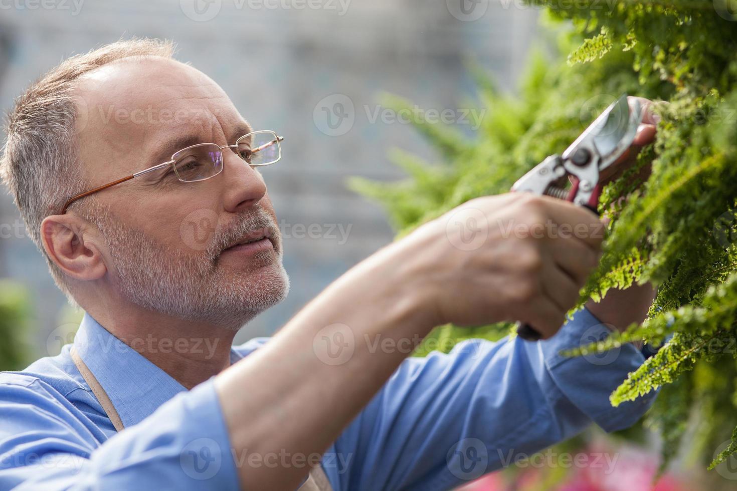 alegre velho jardineiro está trabalhando com alegria foto