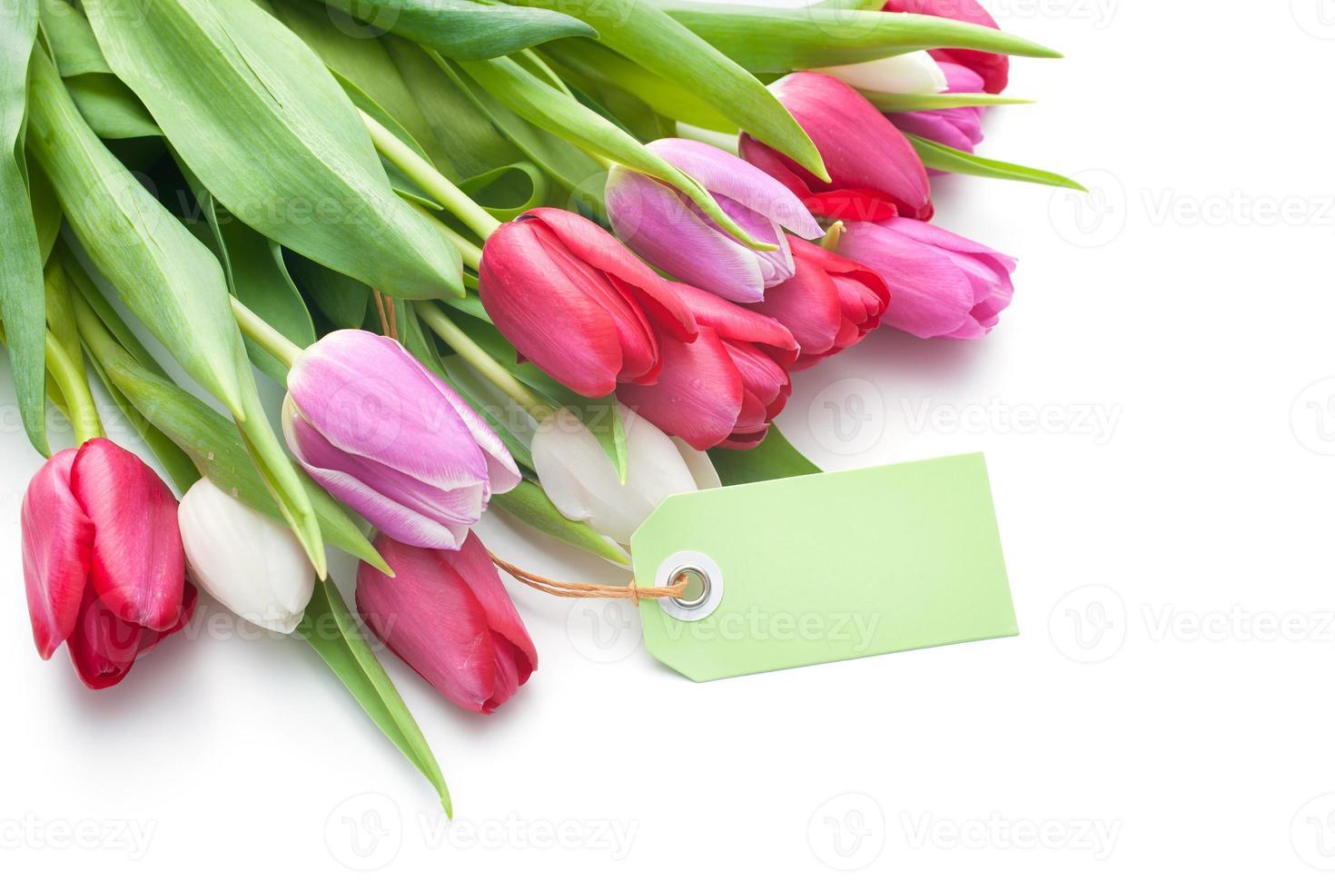 tulipas frescas e tag com espaço de cópia foto