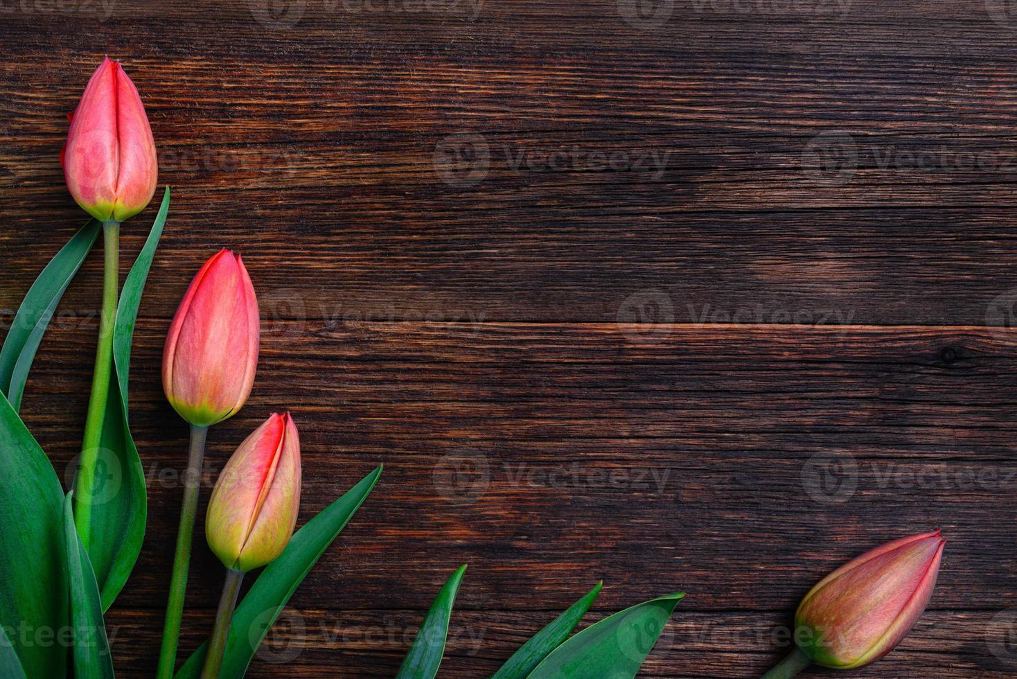 tulipas vermelhas flores na mesa de madeira. vista superior, copie o espaço. foto