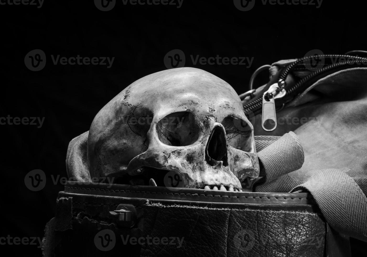 crânio humano são colocados em caixa de couro velha foto