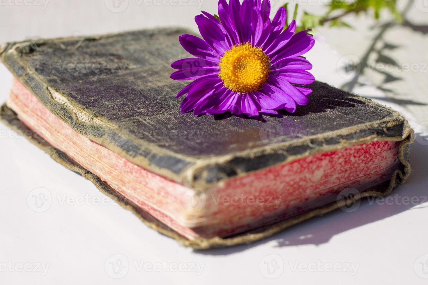 velha bíblia sagrada foto