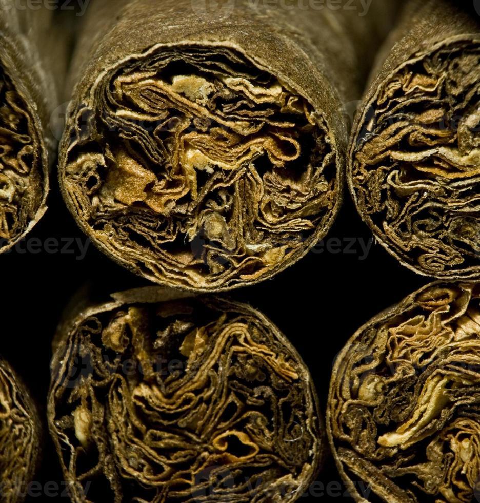 macro de cigarros secos marrons ou cigarrilha como conceito de dependência foto