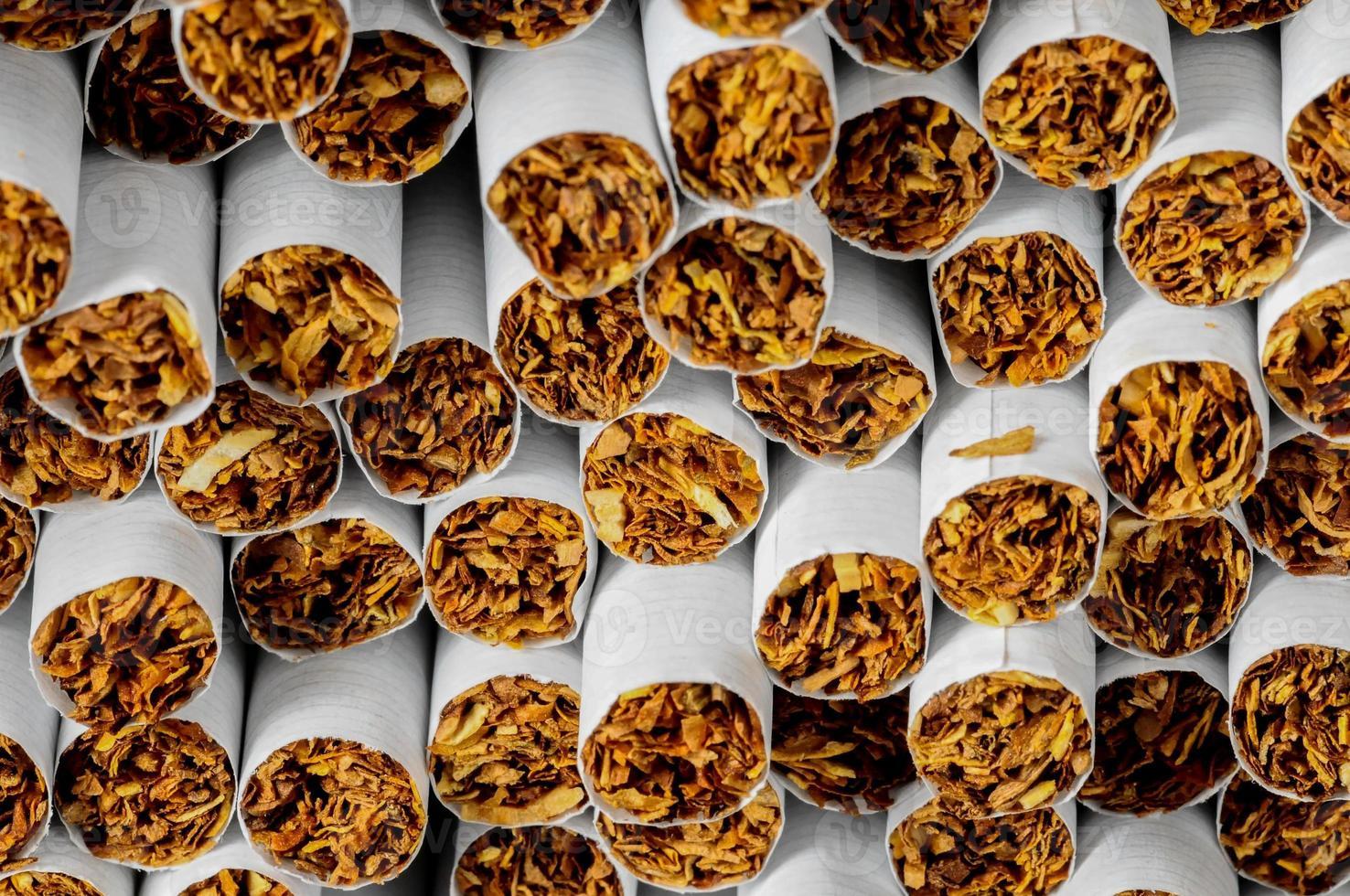 indústria do tabaco foto