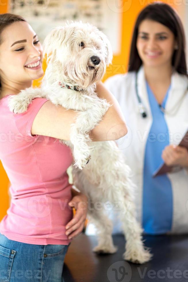 menina feliz e cachorro maltês na clínica veterinária foto