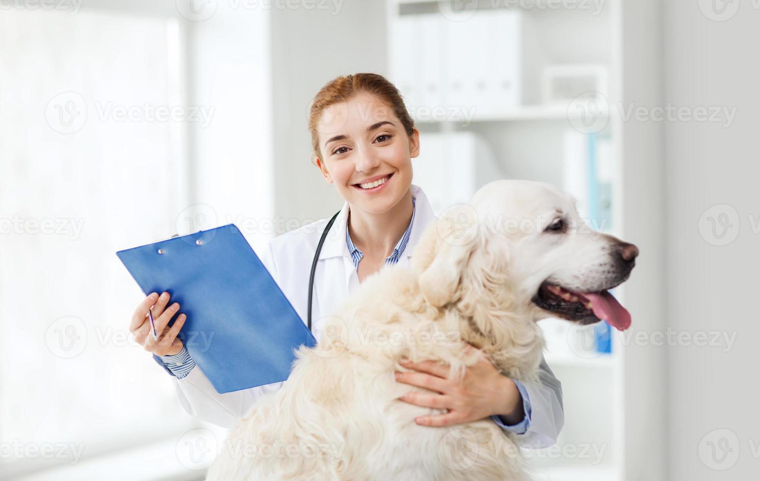 médico feliz com cão retriever na clínica veterinária foto