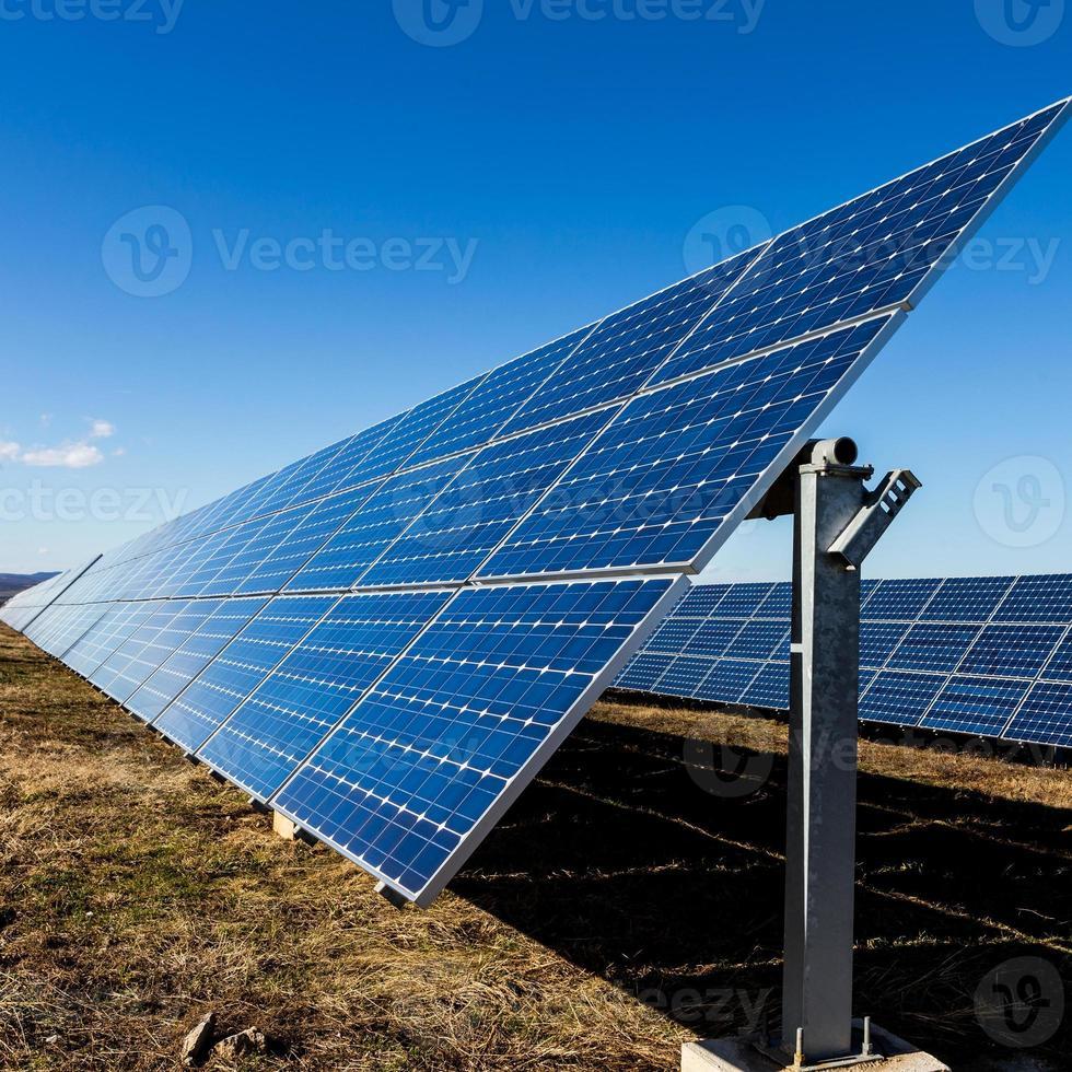 painéis solares fotovoltaicos em campo foto