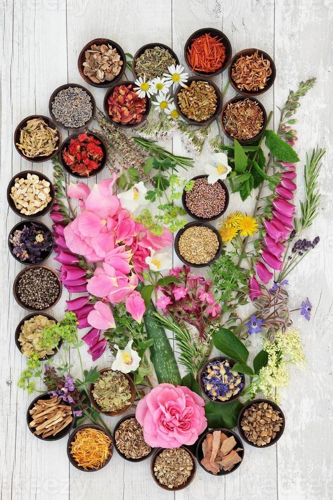 medicina alternativa à base de plantas foto