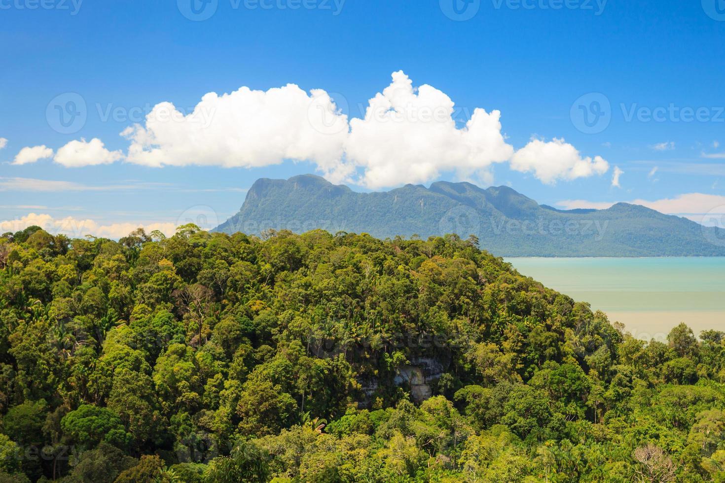 paisagem tropical sobre selva e colinas foto