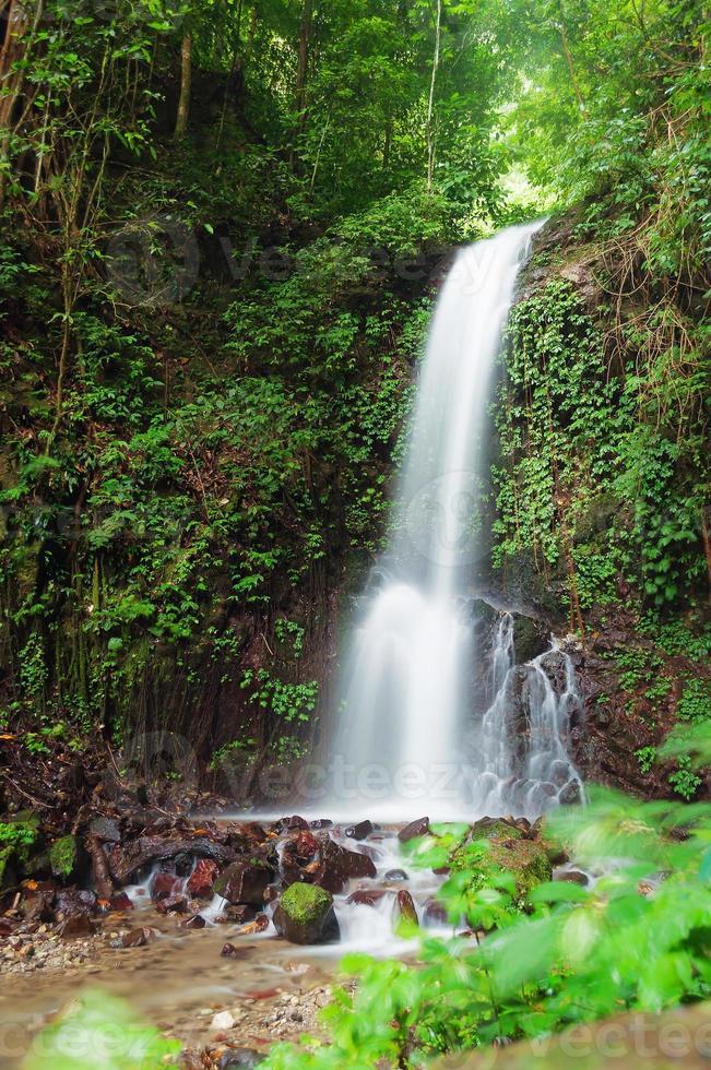 pequena cachoeira na selva foto