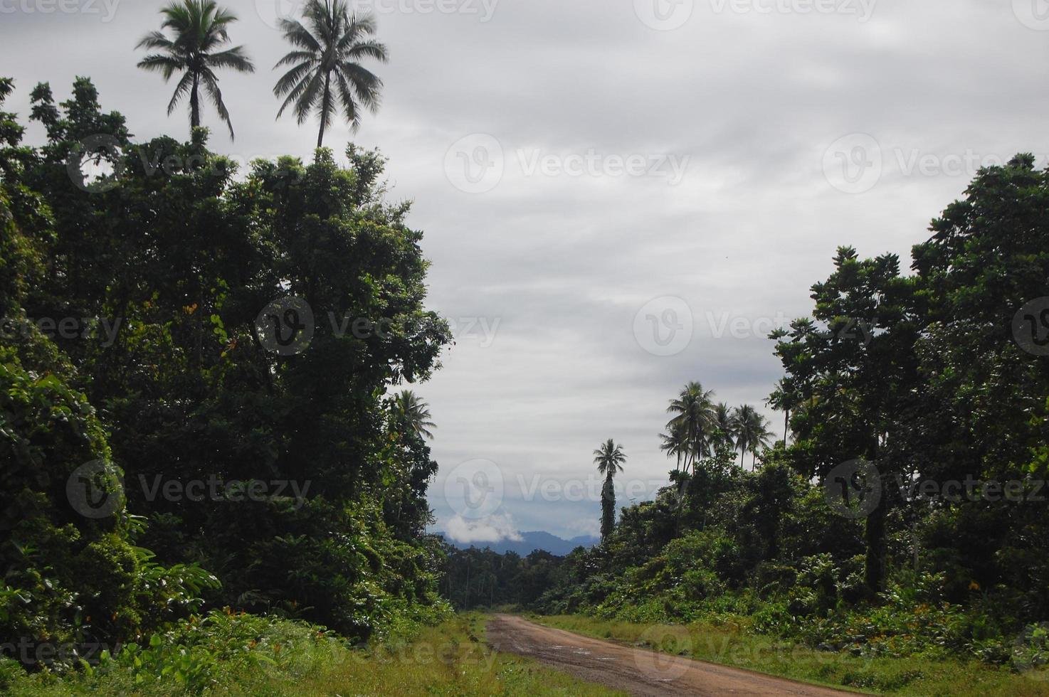 estrada de cascalho nas selvas papua nova guiné foto