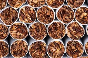 tabaco em cigarros foto