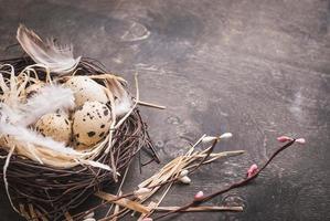 decoração de ovos de páscoa foto