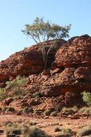 parque nacional kings canyon, austrália
