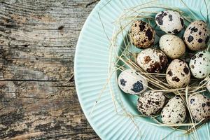 Páscoa - ovos de codorna com feno na placa azul pastel foto