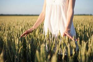 menina tocando trigo