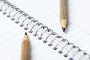 dois lápis simples foto