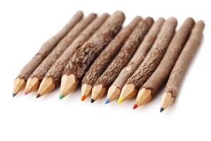 lápis de tronco de árvore foto