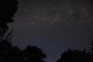Estrela foto