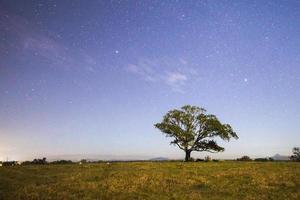 estrelas à noite