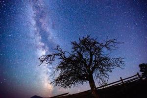 céu estrelado foto