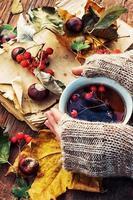 mãos com uma caneca chá de frutas de outono foto