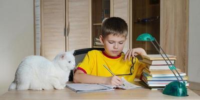 garoto feliz fazendo lição de casa com gato e livros na mesa.