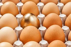 ovo de ouro em uma fileira dos ovos marrons foto