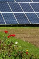 painéis solares no jardim 2 foto