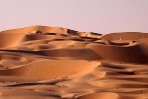 deserto de Abu Dhabi foto