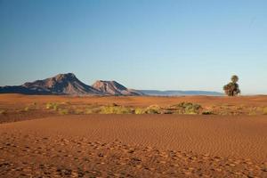edje do deserto foto