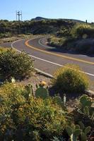 estrada deserta