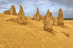 pináculo do deserto foto