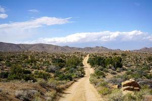 estrada arenosa no deserto