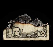 dólar foto